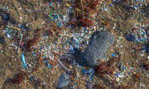 Die EU-Debatte über das Verbot umweltschädlicher Mikroplastik geht weiter