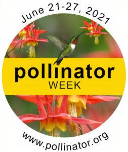 Neues Abkommen für Bestäuber auf der EU-Pollinator Week 2021 diskutiert